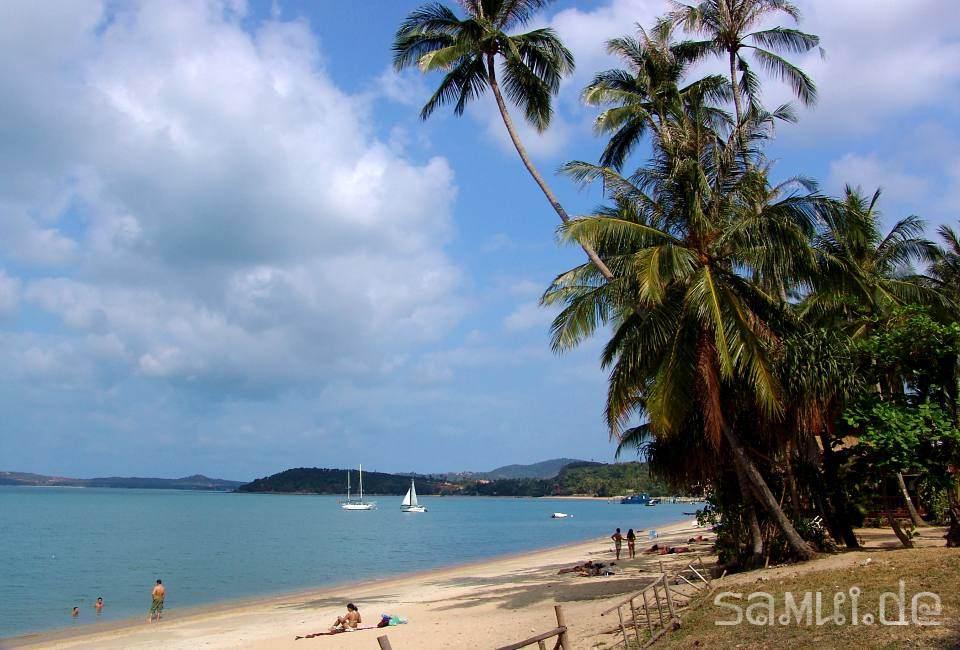 SAMUI.DE • BOPHUT BEACH • Koh Samui Hotels & Bungalows am ...